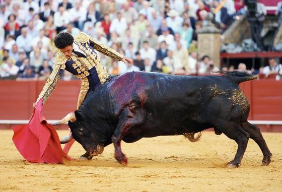 Derechazo de Matías Tejela a su primer astado.  Foto: Juan Carlos Muñoz