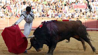 Derechazo de Salvador Vega frente al toro.  Foto: Juan Carlos