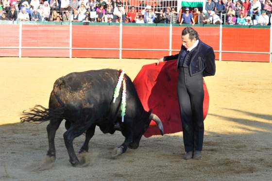 Foto: Baltasar Gálvez