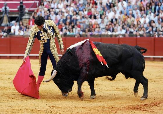 Matías Tejela toreando relajado ante el astado.  Foto: Juan Carlos Muñoz