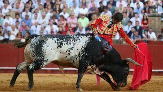 Padilla, vencedor de la tarde, muletazo a la izquierda a uno de los miura.  Foto: Juan Carlos Muñoz