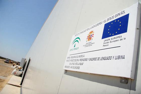 """Entrada a la piscifactoría de """"preengorde y engorde de lenguado y lubina en la finca Veta La Palma"""".  Foto: Belén Vargas"""