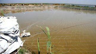 Lago artificial de nacimiento, cría y engorde de las especies.  Foto: Belén Vargas
