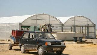 Parte de las instalaciones de la piscifactoría.  Foto: Belén Vargas