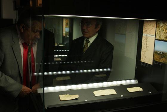Ejemplares de la muestra.  Foto: José Ángel García