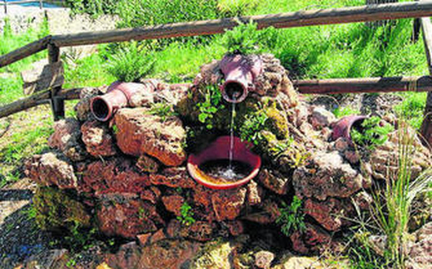 Resultado de imagen de imagenes del jardin botanico de puerto moral