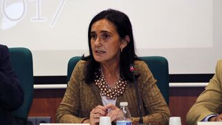 La presentación del plan Romero 2017, en imágenes