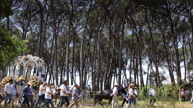 Romeros caminan al encuentro de la Blanca Paloma en la aldea de El Rocío.