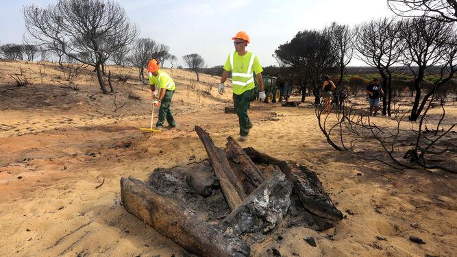 Retirada de material incendiado en la Cuesta Maneli