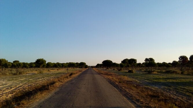 El Camino de la Mar, donde el colectivo pide el asfaltado.