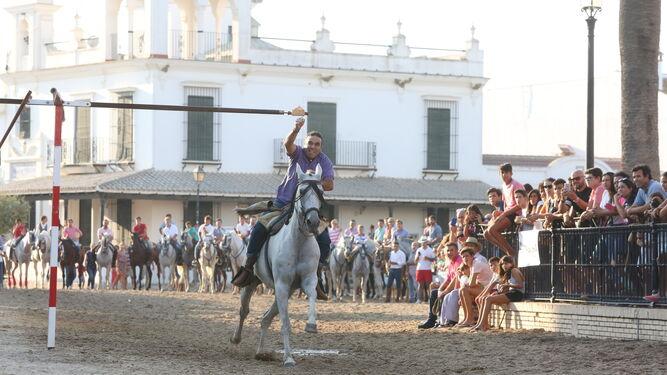 Distintos momentos de la genuina carrera de cintas a caballo en El Rocío.