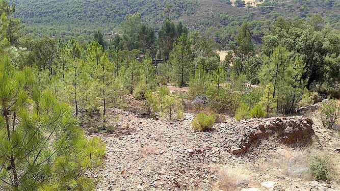 La infraestructura se ubicará en el término municipal de Minas de Riotinto, en los aledaños del antiguo cementerio de La Naya.