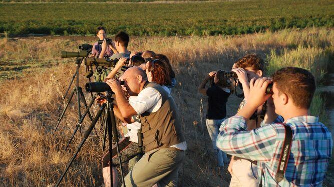 Varios aficionados disfrutan de una actividad en la naturaleza.