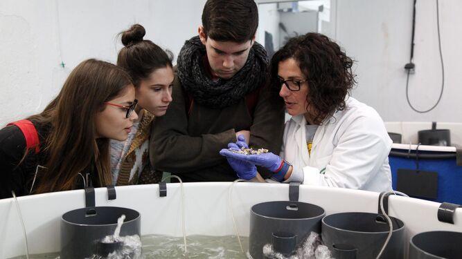 Jóvenes investigadores en el Ifapa