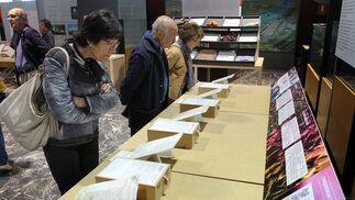 Imágenes de la exposición 'Sabores que cruzaron los océanos'.