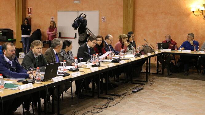 El Consejo de Participación, durante su reunión de ayer en Almonte.