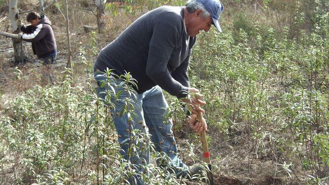 Un operario municipal prepara el terreno en los trabajos previos a la actividad, realizados el martes. Abajo, reunión de trabajo en el campo.