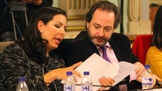 Imágenes del pleno celebrado en el ayuntamiento de Huelva