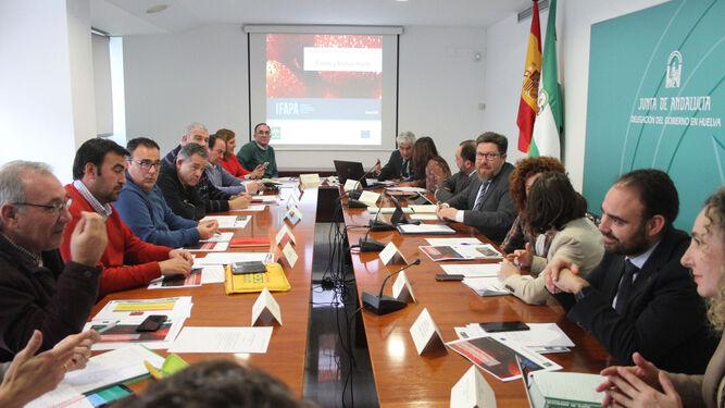 Reunión de la Mesa de los Frutos Rojos, presidida por el consejero Rodrigo Sánchez Haro.