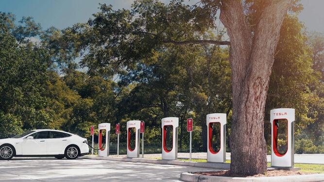 Tesla instalará una estación para la recarga de vehículos este año