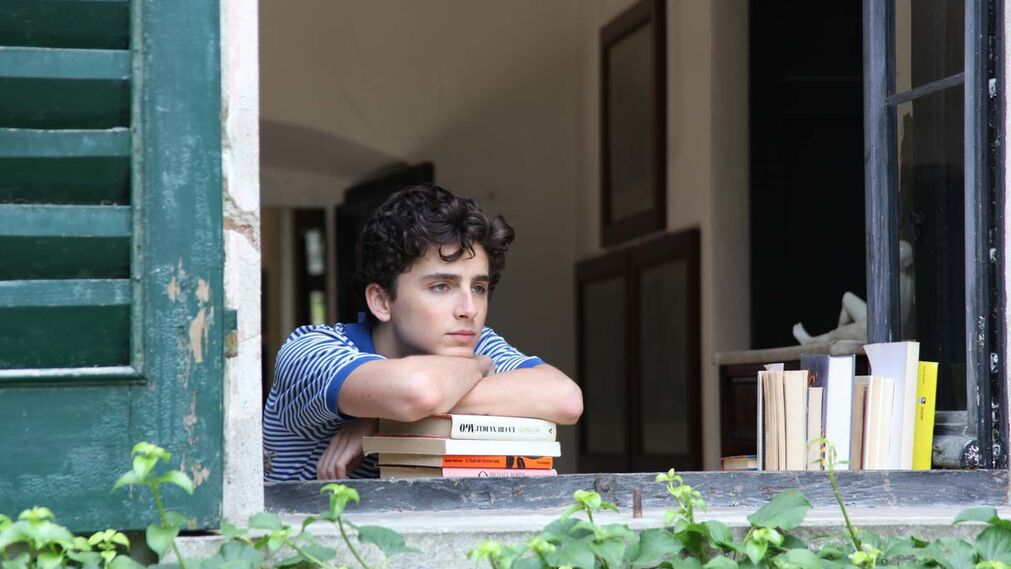 Timothée Chalamet  (Call Me by Your Name)