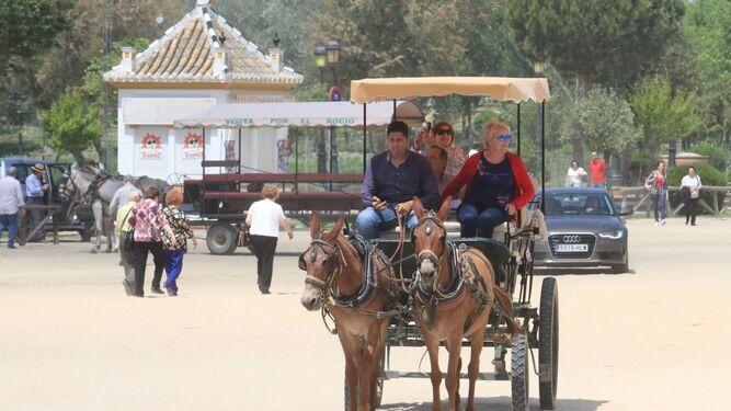 Algunos visitantes se acercan estas jornadas a El Rocío.