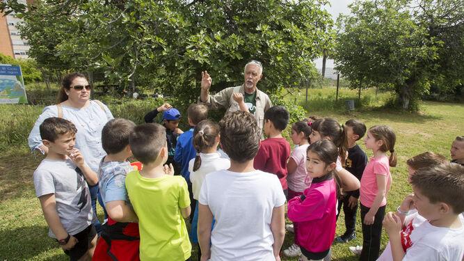 Un monitor se dirige a un grupo de escolares durante una de las sesiones del taller celebradas esta semana en distintas zonas del Parque Moret.
