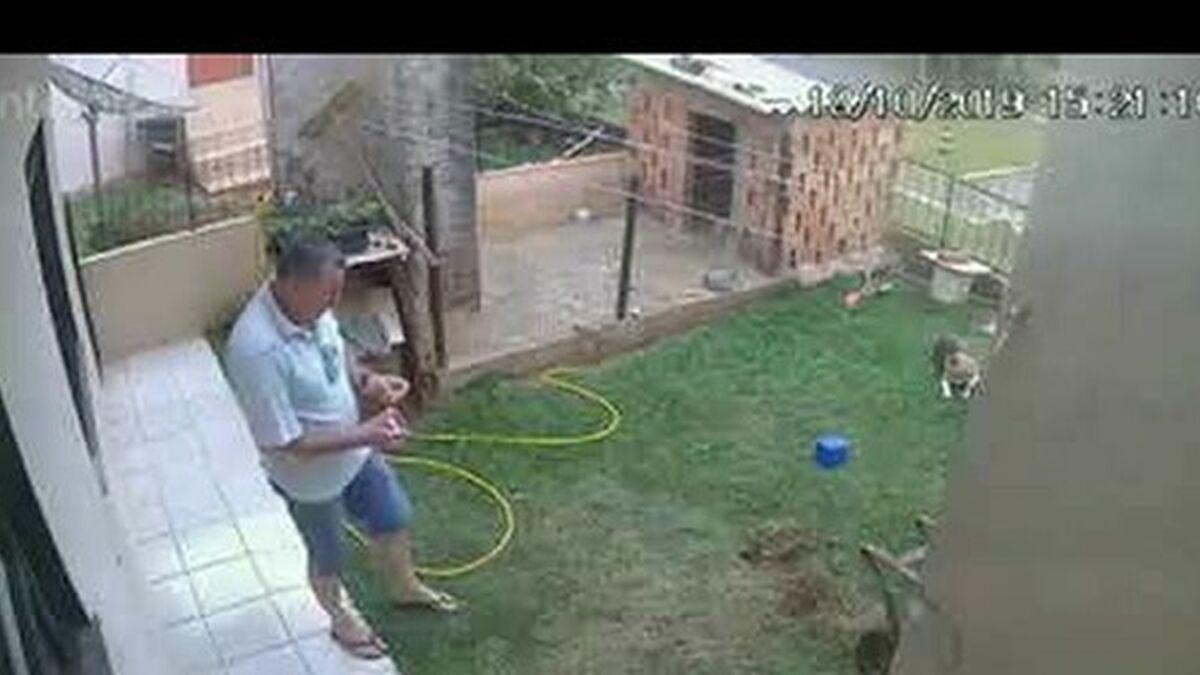 Un brasileño trata de acabar con una plaga de cucarachas y acaba provocando la voladura de su patio