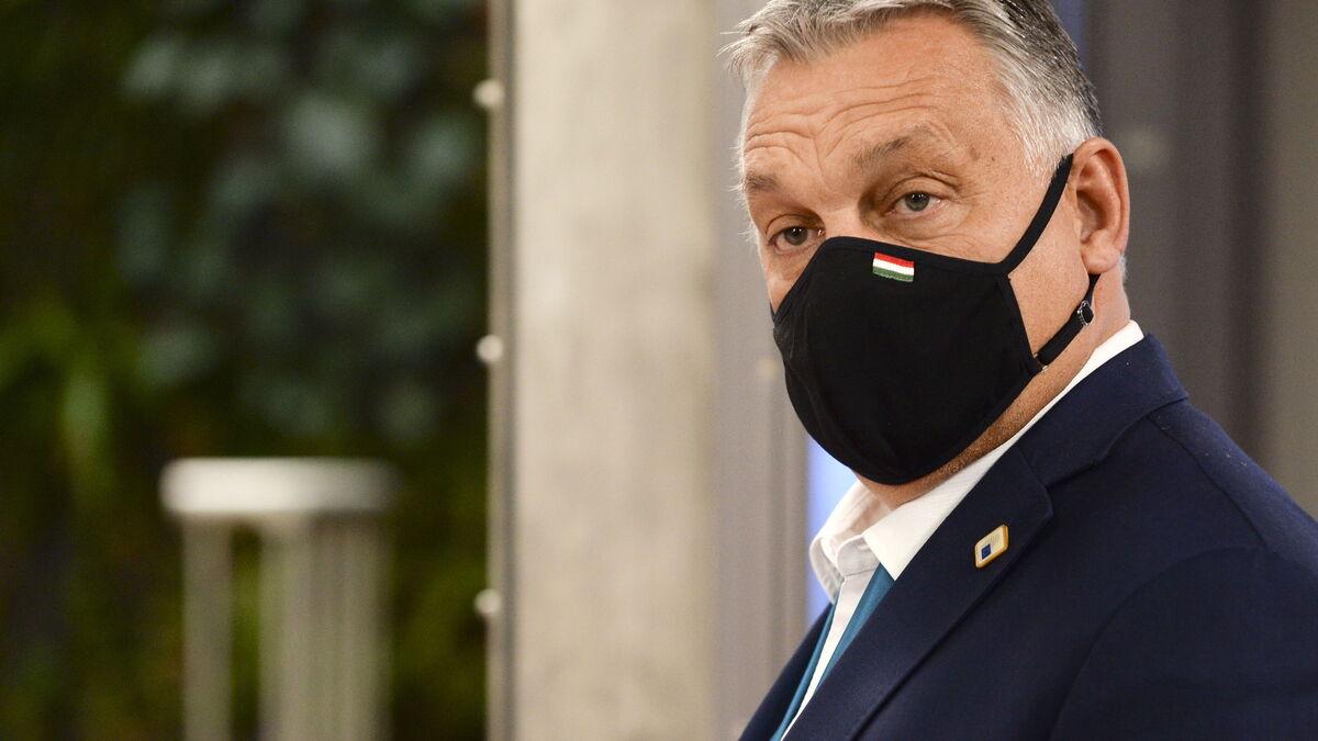 Un eurodiputado del partido de Viktor Orban, pillado en una orgía en Bruselas
