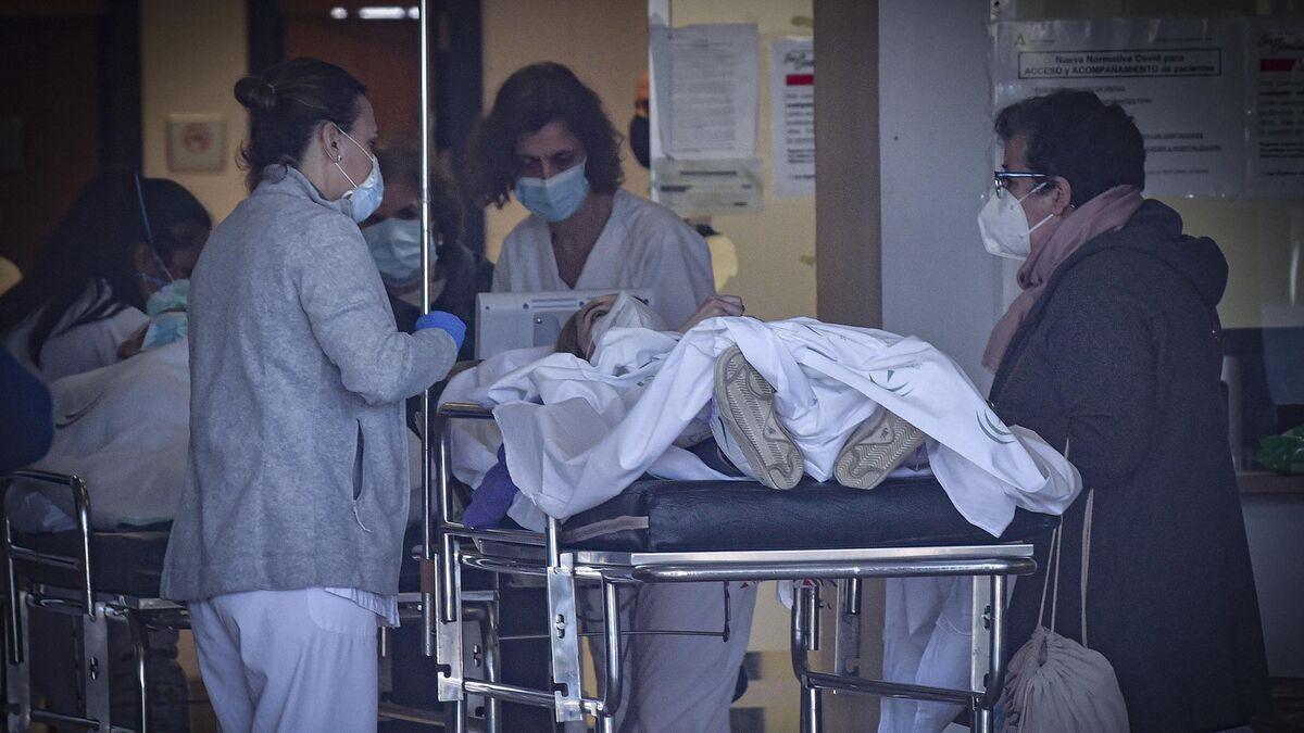 Coronavirus en España: La incidencia baja de 200 pero hay 329 muertes más
