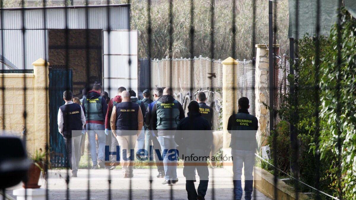 Imágenes de la operación antidroga desarrollada en Huelva