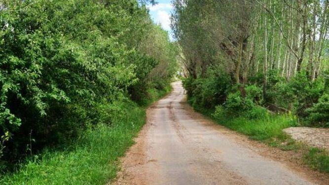 Vista de uno de los tramos del Camino Natural de los Molinos del Agua