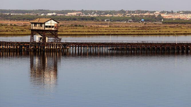 Vista del estado actual del Muelle de Tharsis.